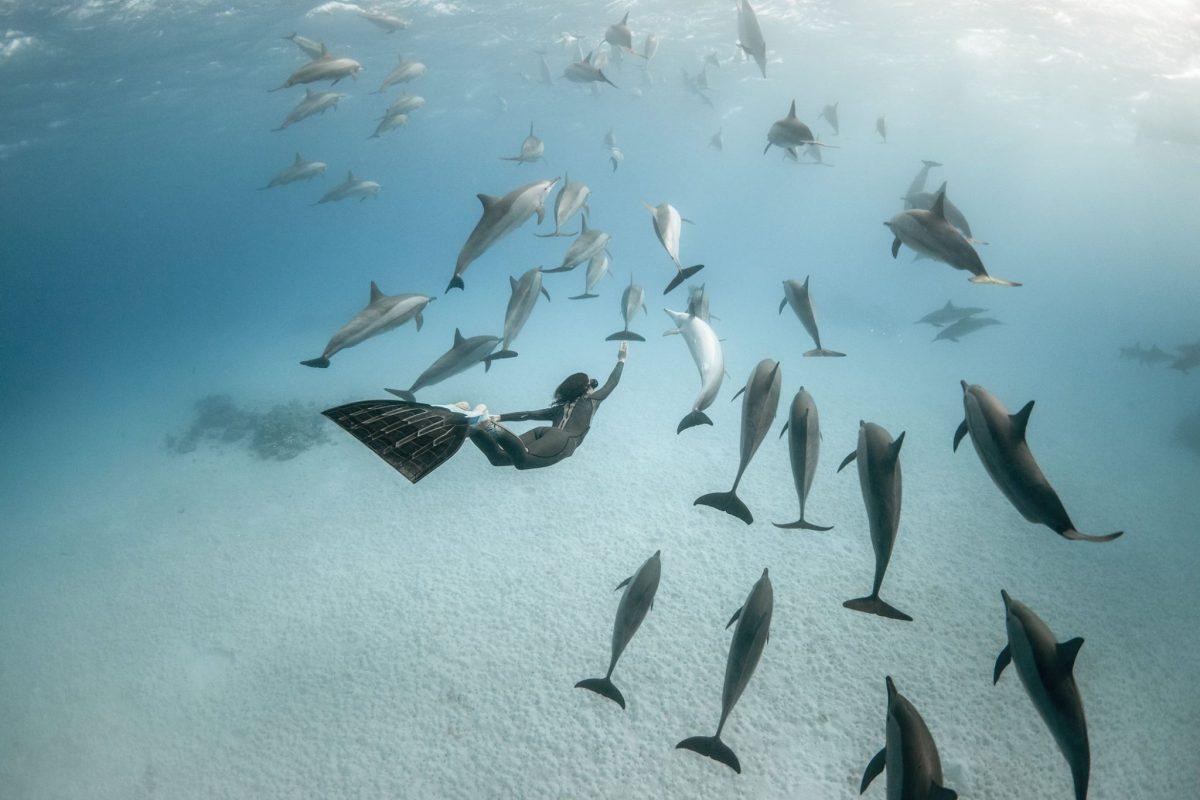Alex Voyer, Marianne Aventurier en compagnie de dauphins