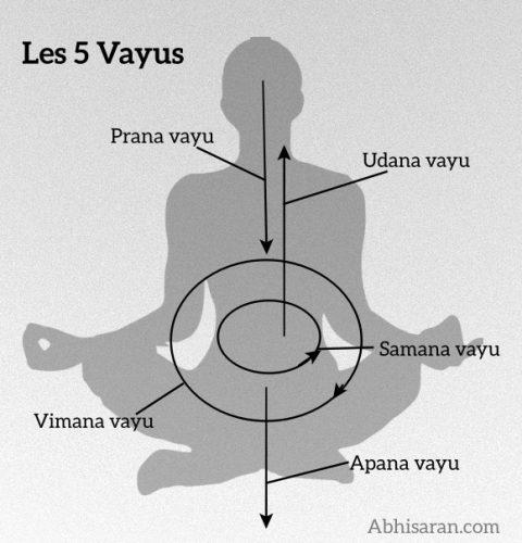 pranayama et pratique de l'apnée, la discipline du souffle