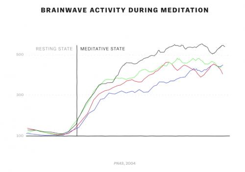 Activité cérébrale pendant une méditation de pleine conscience