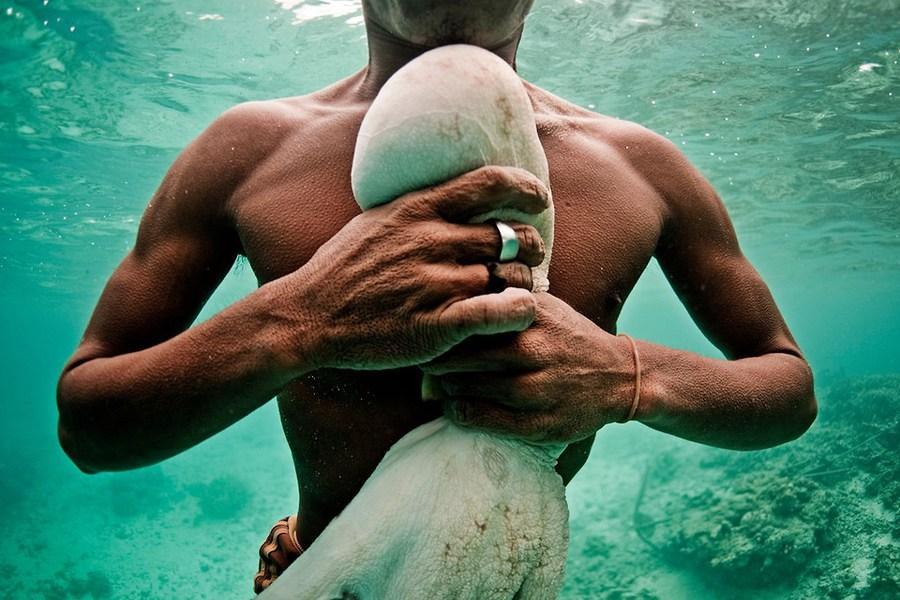Bajau, peuple d'Indonésie, champions des records mondiaux d'apnée