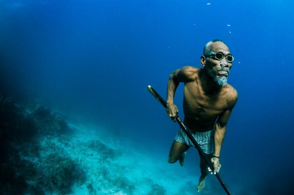 bajau d'indonésie en train de chasser, apnéiste, vagabond, plongeur de l'extreme et peuple des records d'apnée