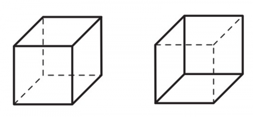 Le cube de necker et le changement de perception