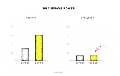 Activité cérébrale des experts en méditation VS des débutants en méditation