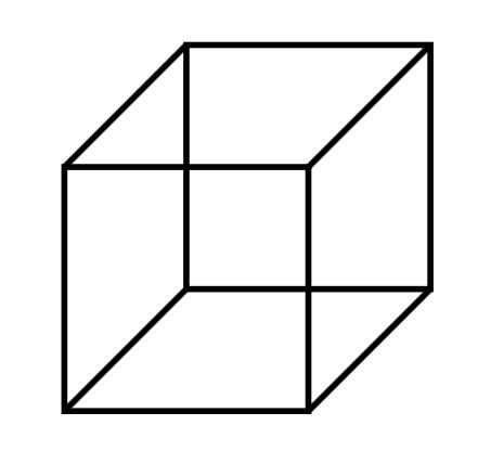 Cube de Necker et perception différentes du monde