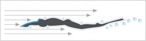 synthèse des resistances passives en monopalme chez l'apnéiste
