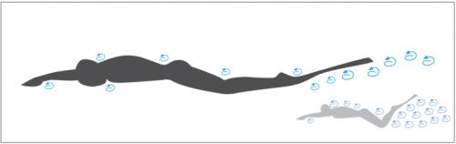schéma de la loi hyrdodynalique de la trainée monopalme apnée