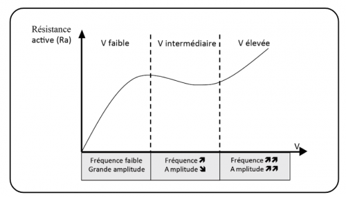 vitesse de nage et hydrodynamisme