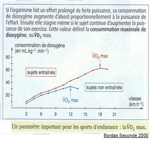 recherche de la VO2max à l'entrainement, adaptation physiologique