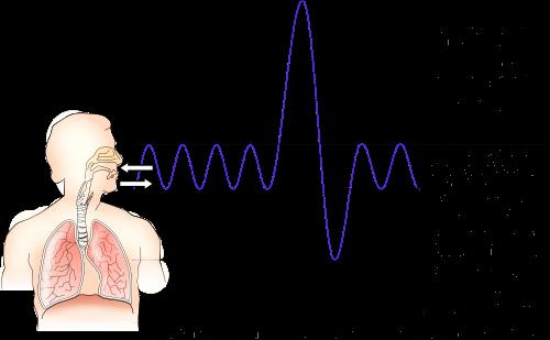 volume respiratoire de réserve, volume pulmonaire, capacité vitale, volumé de réserve